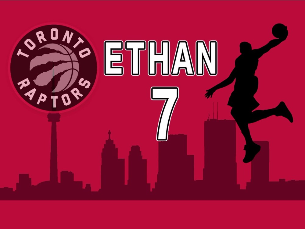 hot sale online b7417 be86a US $24.03 5% OFF|custom toronto raptors basketball city birthday themed  photo backdrop High quality Computer print party backgrounds-in Background  ...