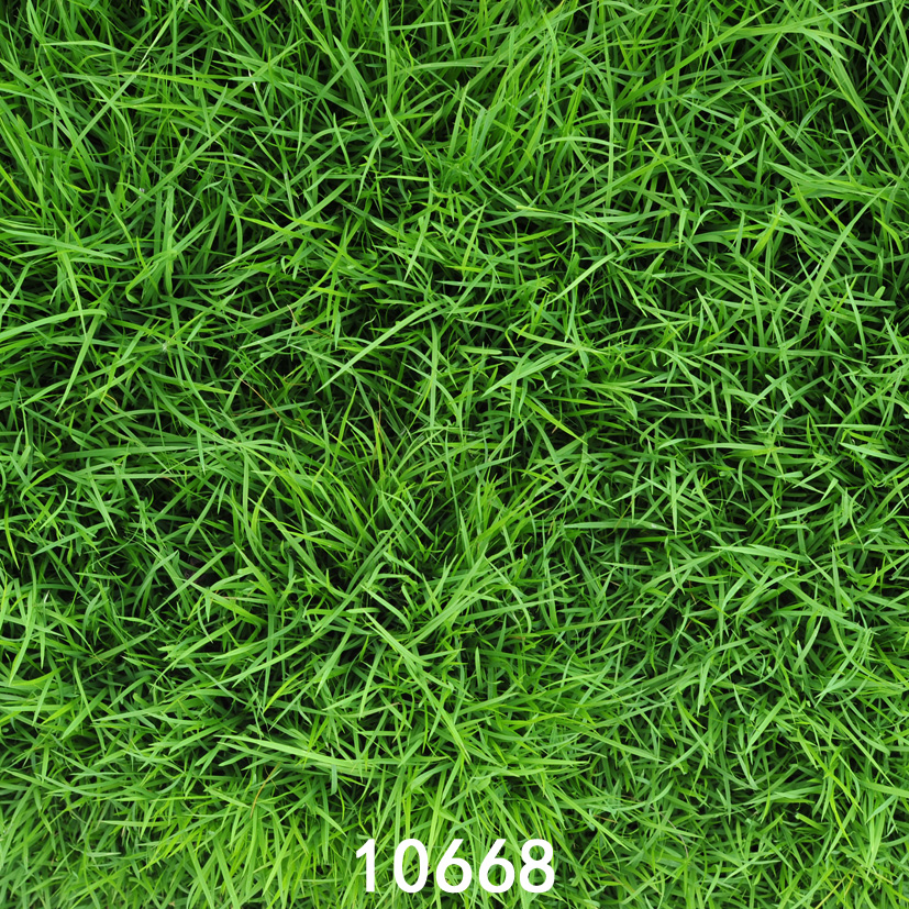 5x5ft green grass newborn photography backdrops studio backgrounds for photo studio backgrounds for photo studio studio backgroundbackground for photo aliexpress us 10 0 5x5ft green grass newborn photography backdrops studio backgrounds for photo studio backgrounds for photo studio studio backgroundbackground