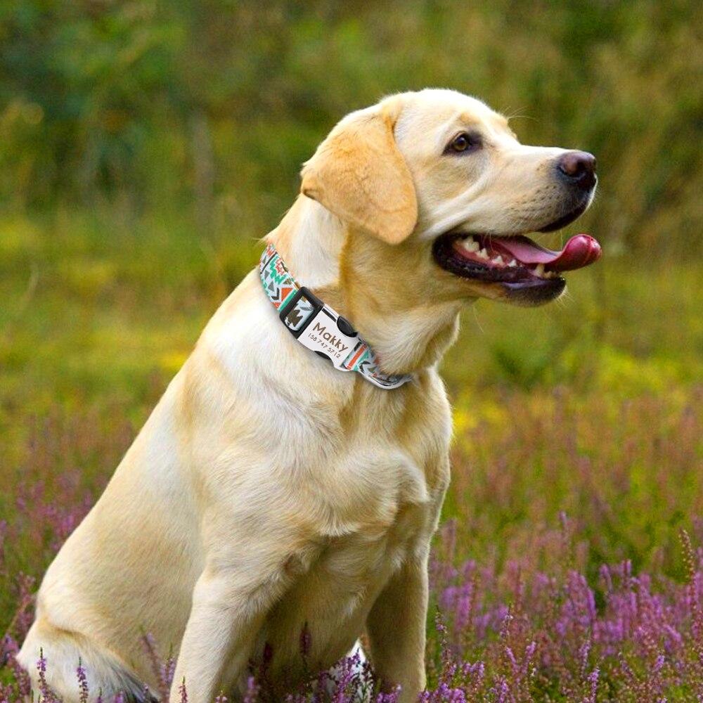 HTB14f4.borrK1RkSne1q6ArVVXaI - Halsband hond met naam en telefoonnummer nylon vrolijke motieven