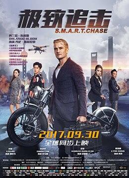 《极致追击》2017年中国大陆动作,犯罪,冒险电影在线观看