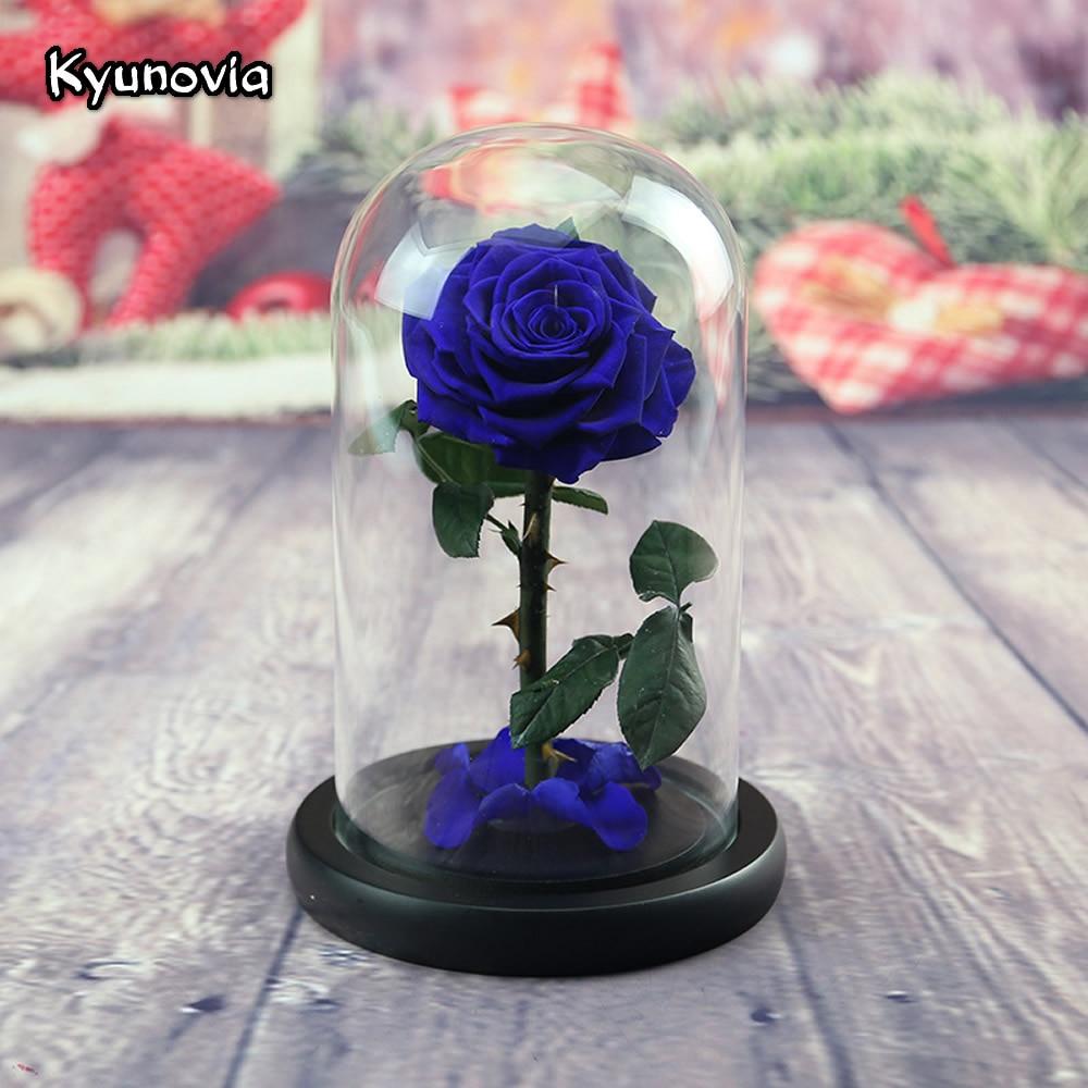Kyunovia petit Prince préservé pétales de fleurs de Rose dans un verre immortel Roses rouges pour la saint-valentin cadeaux d'anniversaire KY83