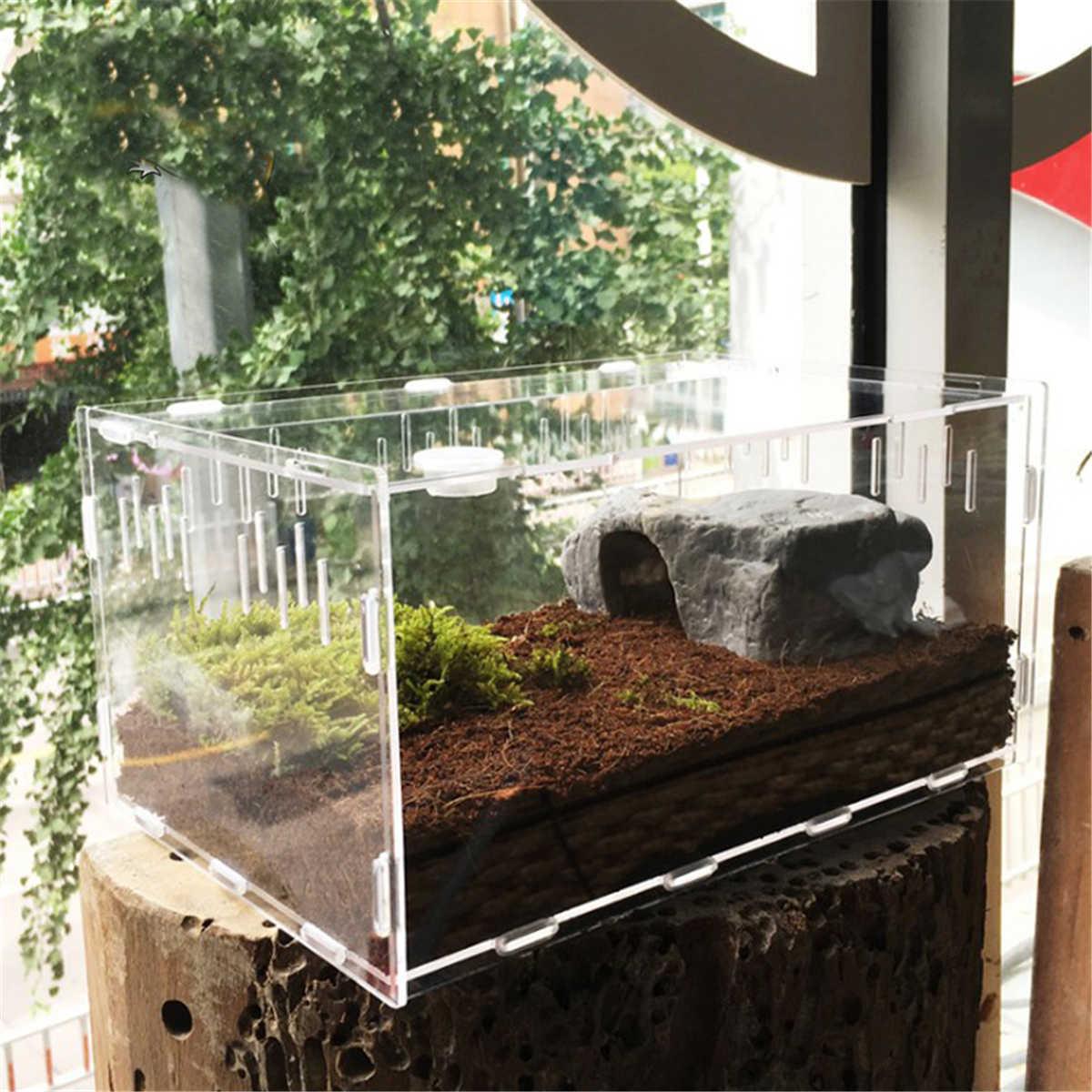 S/L Size Reptile Tank Insect Spiders Tortoise Lizard Acrylic Transparent Breeding Box Vivarium Lid Reptile Pet Product Terrarium