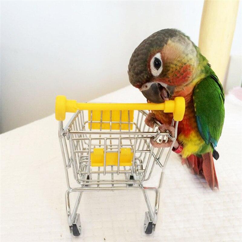 Resultado de imagem para pet shop papagaio