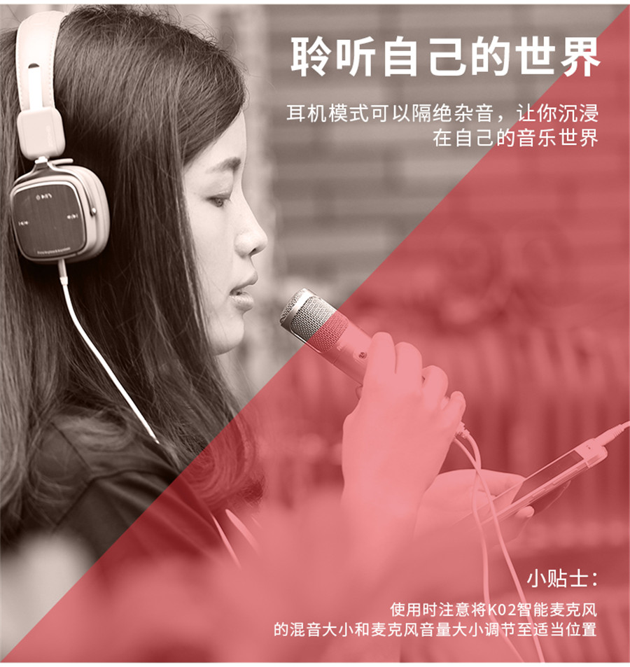 Remax K02 Microphone 4