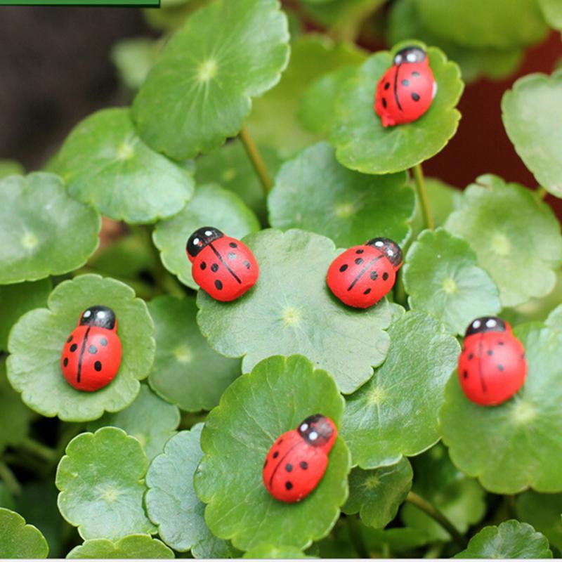 10pcs lot Mini Cabochon Ladybug Fairy Garden Miniatures Garden Ornament Decoration Micro Landscape Bonsai Figurine Resin