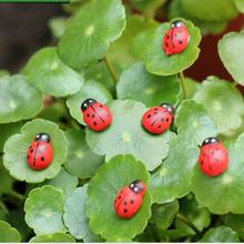 10pcs/lot Mini Cabochon Ladybug Fairy Garden Miniatures Garden Ornament Decoration Micro Landscape Bonsai Figurine Resin Crafts