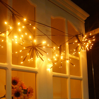 SUNLI HOUSE Outdoor 2M 100 LEDS New Year LED Lamp For Wedding Decoration LED String Light