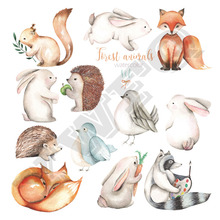 12pcs/Set Cute Little Fox Ironing Sticker Small Squirrel Animal Patches Washable Heat Transfers Diy Clothes Jeans Appliques