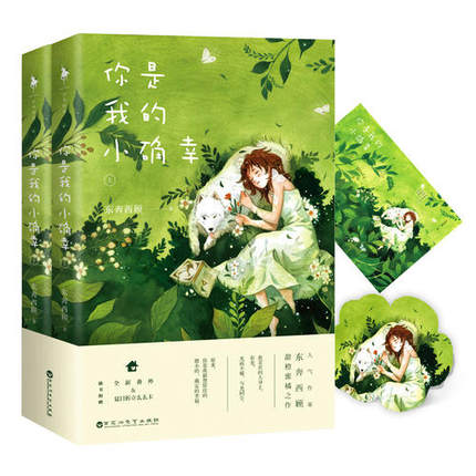 Chinese Sweet Love Novels- You Are My Lucky By Dongbenxigu / Chinese Popular Novel Fiction Book
