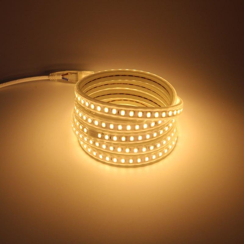 120 LED/m 5730 lumière LED bande Tube 5 10 15 20 25 30 100 mètres câble avec cordon d'alimentation EU prise blanc chaud blanc froid