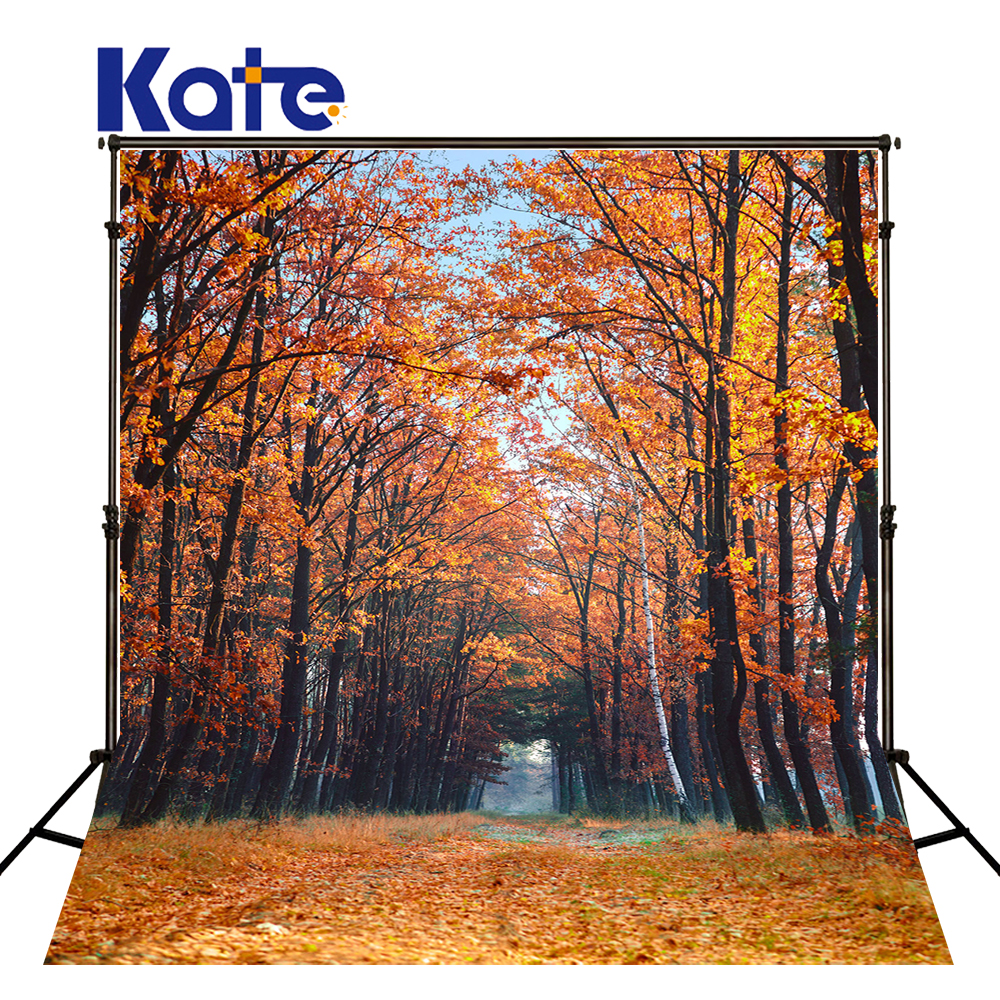 Kate Autumn Fallen Leaves Photography Backdrops Wedding Camera Fotografica Profissional Street Backgrounds For Photo Studio kate country life camera fotografica profissional old house photography backdrops children washable photo background