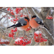 animal bird and flower picture Round crystal Cross Stitch 5D DIY Diamond Embroidery mosaic pattern home decor 30x40cm