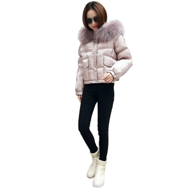 Здесь можно купить  2017  Winter Women Coat Warm Super Large Fur Collar Down Cotton Jacket Thick Hooded Down Coat Fashion Warm Short Jacket SK106  Одежда и аксессуары