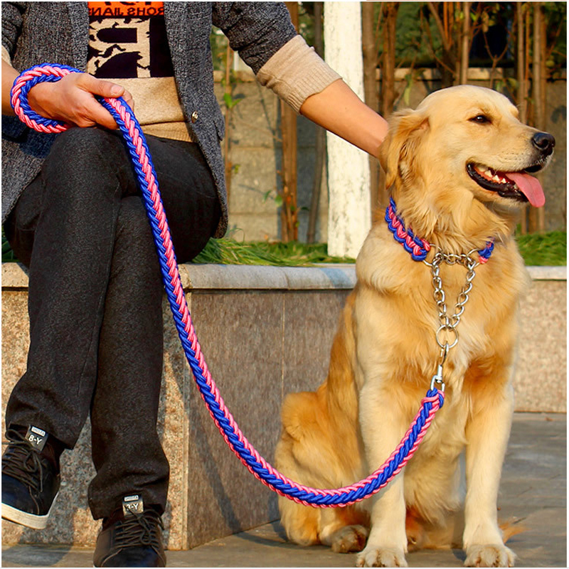 Strong quality dog Leashes Upgraded color collar stereotyped rope Large Dog Leashes with P-chain for Big strength dog