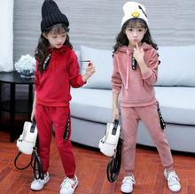 Children Clothing Sets Autumn Winter Baby Girl Sports Suit Velvet Hoodies Coat + Pant Sets Kids Tracksuits Girls Clothes Suits