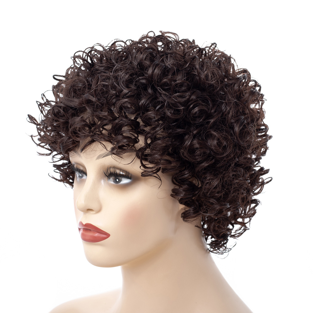 Image 5 - Short Kinky Curly Afro Wig Heat Resistant Wigs For Women Brown Nautral Cosplay Costume Party Synthetic Hair YxCheris-in Synthetic None-Lace  Wigs from Hair Extensions & Wigs