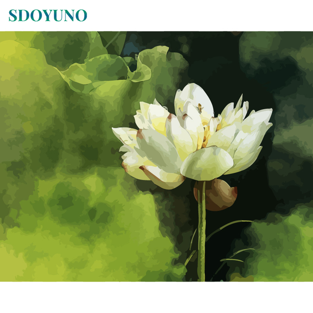 Sdoyuno Frame Lotus Flower Diy Painting By Numbers Acrylic Paint On
