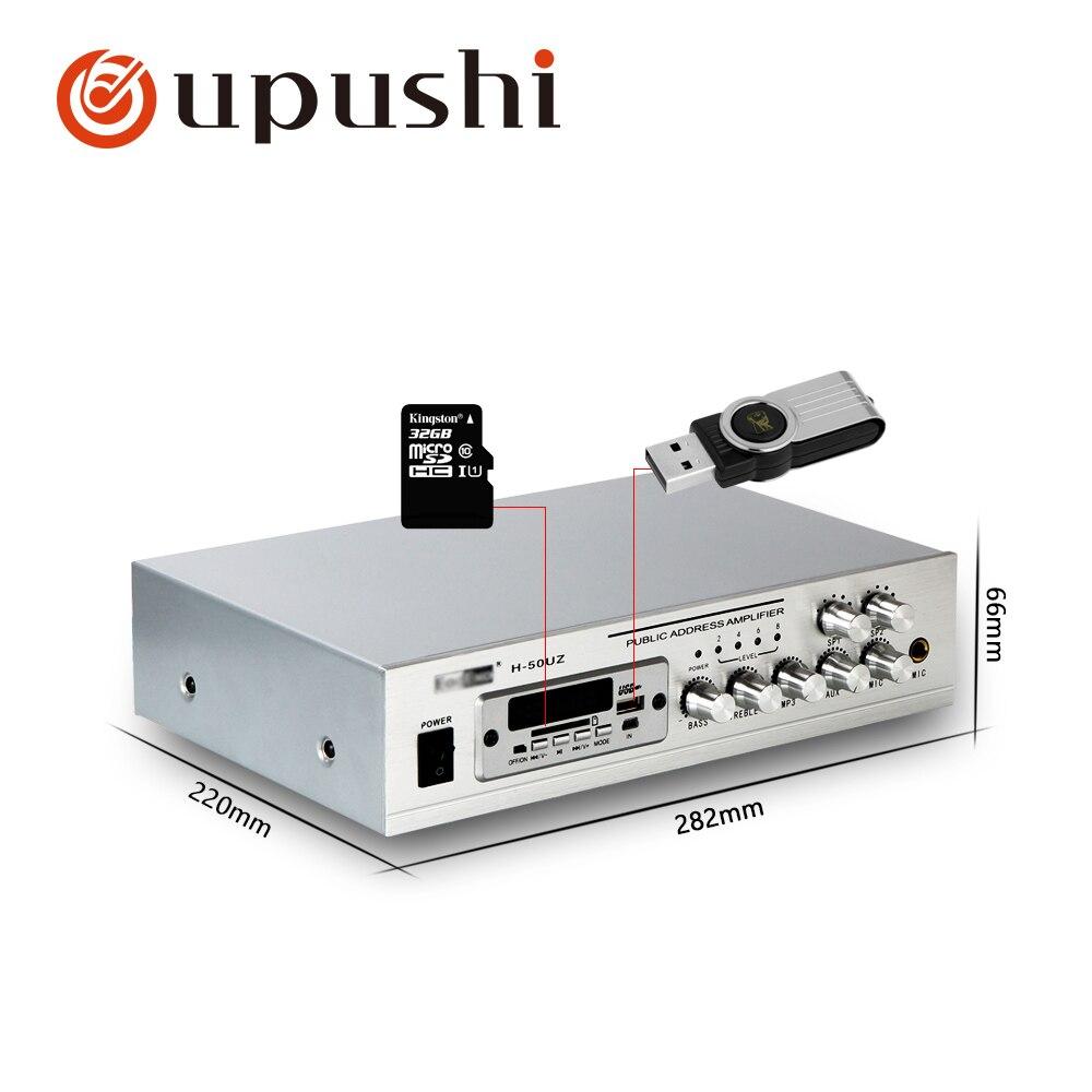 Sd Karte Herzhaft Oupushi Pa System 50 W Hause Stereo Verstärker Bluetooth Mini Aduio Verstärker Kleine Power Amp Mit Usb Fm HüBsch Und Bunt