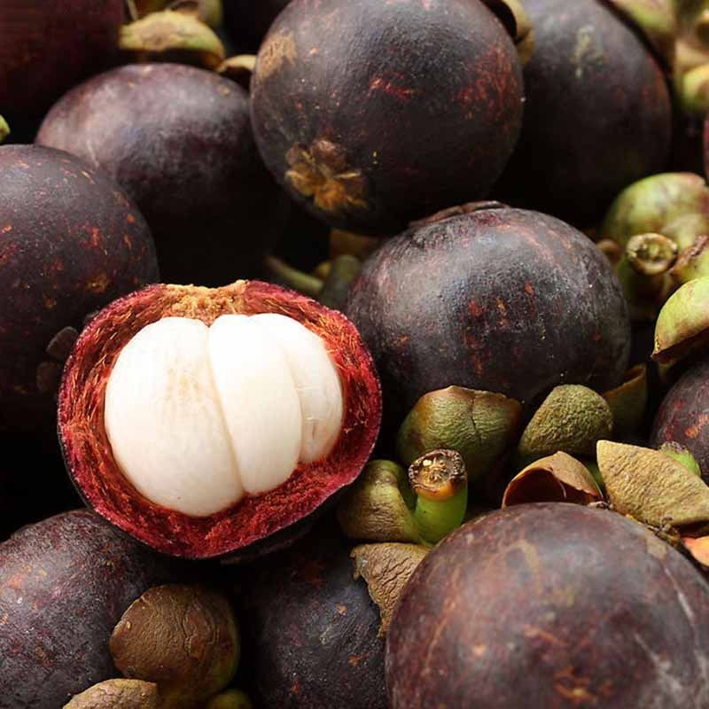 best top 10 fruit richness ideas and get free shipping