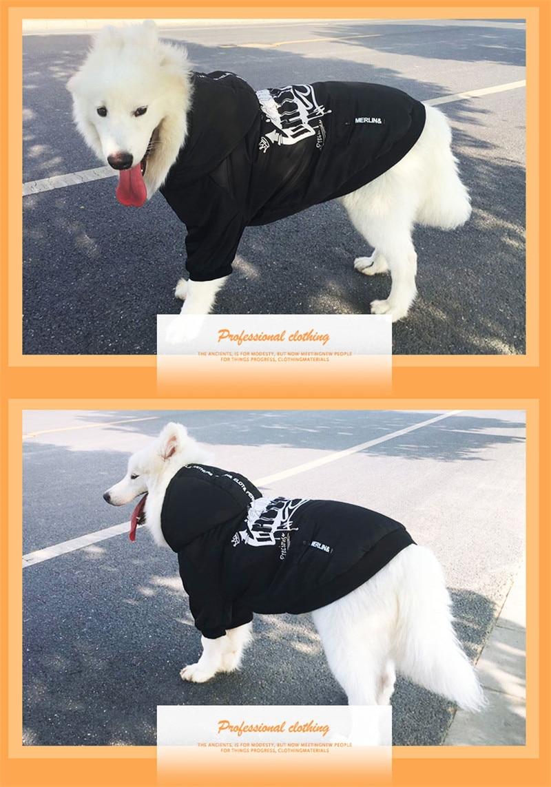 Labrador large dog clothes winter (11)