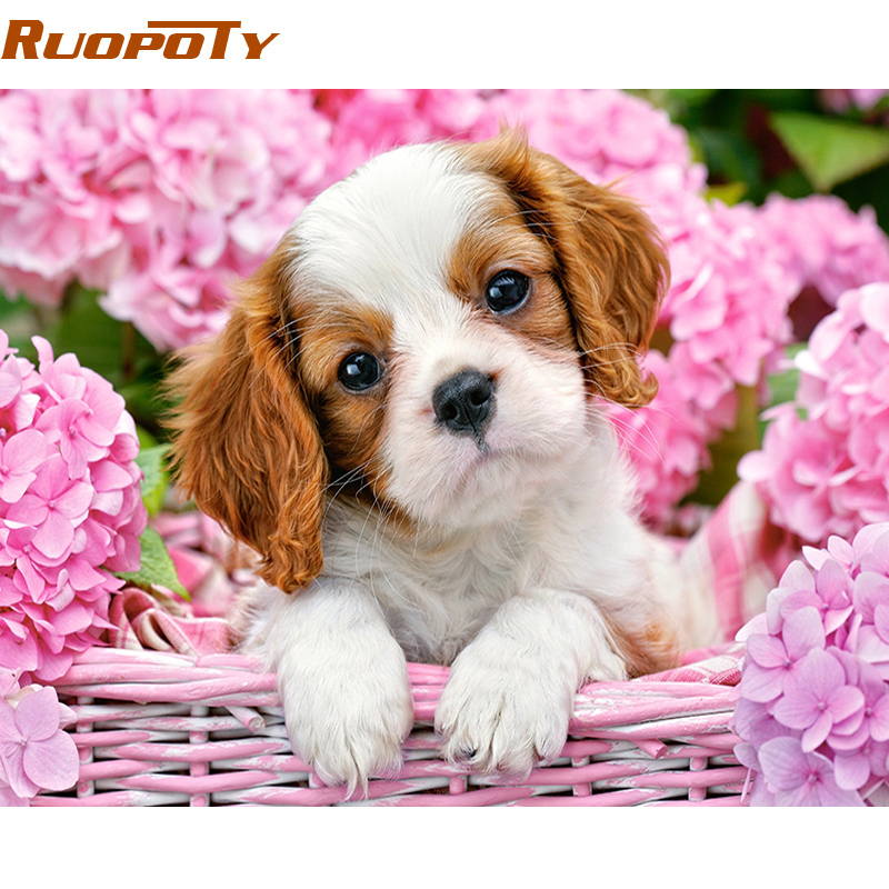 RUOPOTY Diy Frame Dog DIY Painting By Numbers Animals Hand Painted Oil Painting Modern Wall Art Picture For Home Decor 40x50cm
