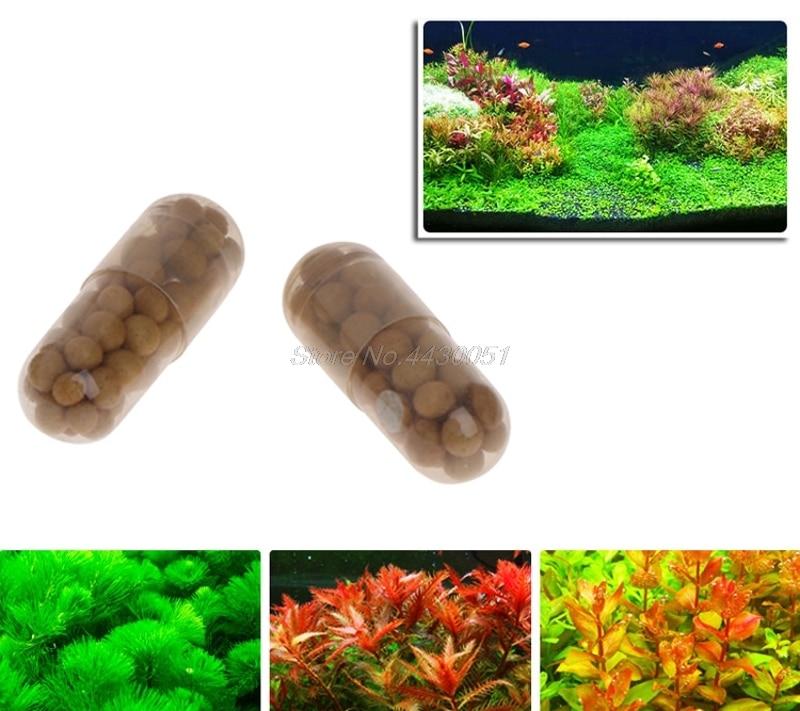 40 Pcs Aquatic Plant Water Root Fertilizer Condensed Aquarium Fish Tank Cylinder