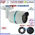 MEJOR H.265 Ambarella 1080 P IMX290 2MP P2P Mini Cámara IP Onvif IP Cámara Al Aire Libre, H.264, IR-CUT, PoE opcional, 3.6mm de la Lente, HDR