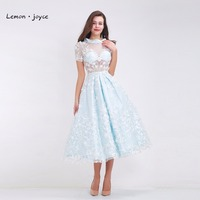 Light Blue Prom Dress Short 2017 New With Vestido De 15 Anos Flowers A Line Tea