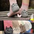 2016 Novas mulheres meias gato bonito listrado de algodão harajuku outono inverno meias chão caricatura meias para menina 1 lote = 6 peça