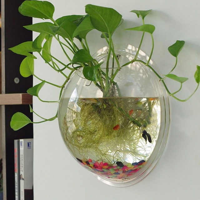 Decorative Fish Bowls Magnificent Clear Wall Mounted Hanging Acrylic Fish Bowl Aquarium Tank Plant