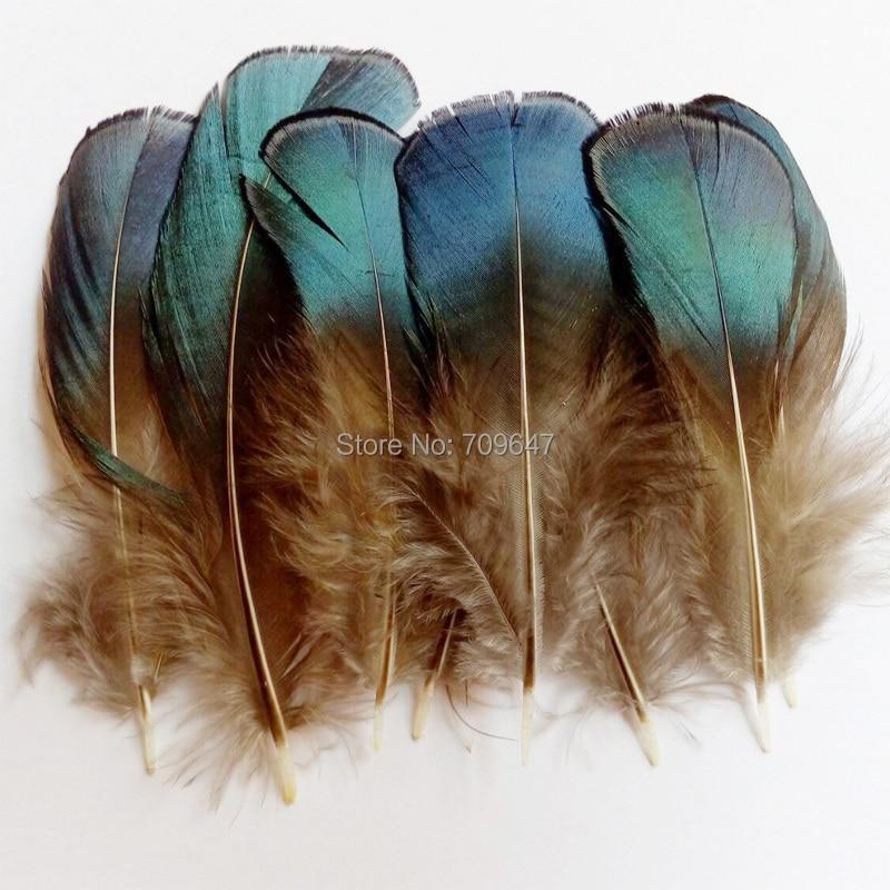 lot de 2 plumes faisan argenté 20 cm