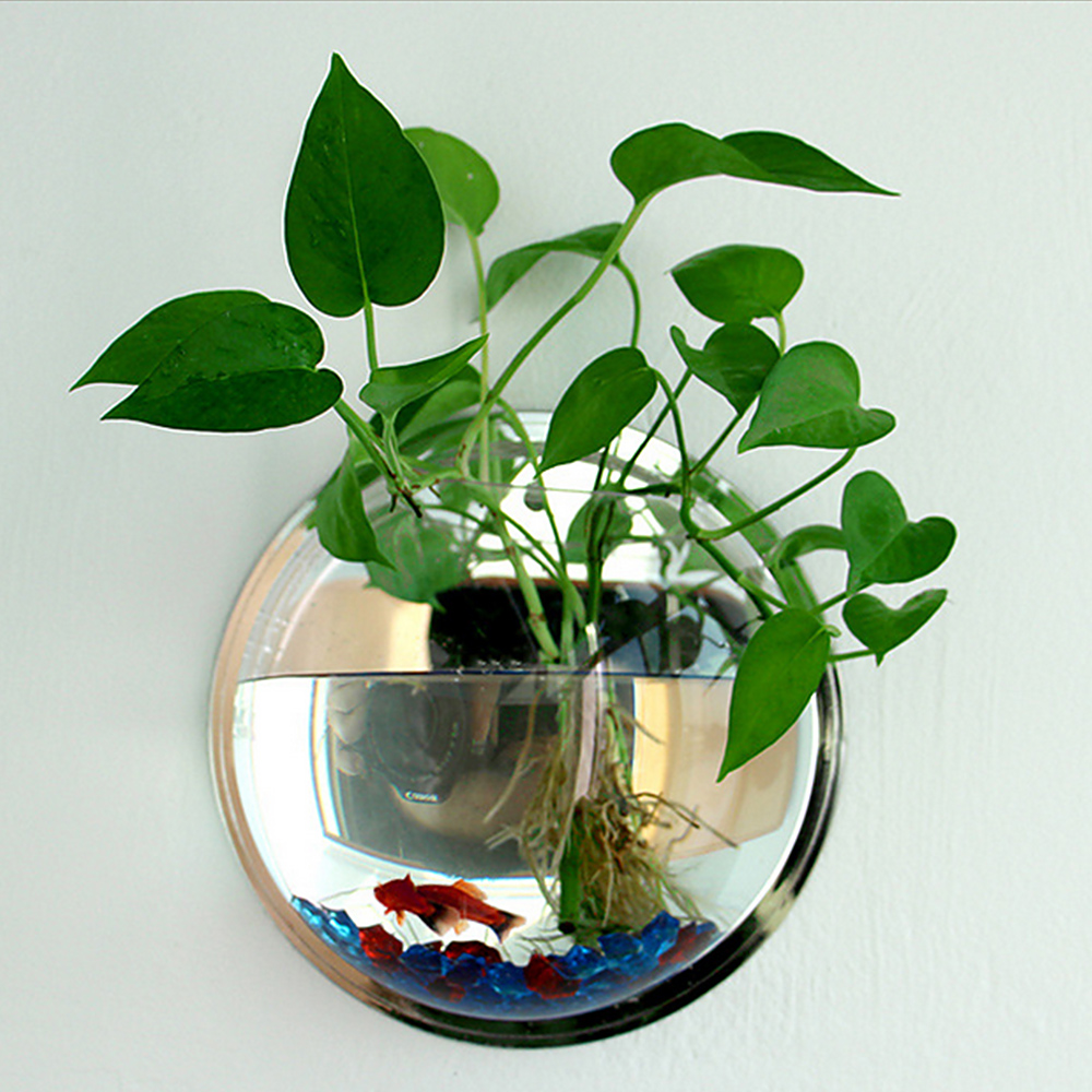 US $4.66 12% OFF|Pot Plant Wall Mounted Hanging Bubble Bowl Fish Tank on home park designs, home dog kennel designs, home art designs, home castle designs, home cafe designs, home glass designs, home library designs, home water feature designs, home construction designs, home gardening designs, home lake designs, home decor designs, home plans designs, home school designs, home beach designs, home entertainment designs, florida home designs, home archery range designs, home cooking designs, home salt designs,