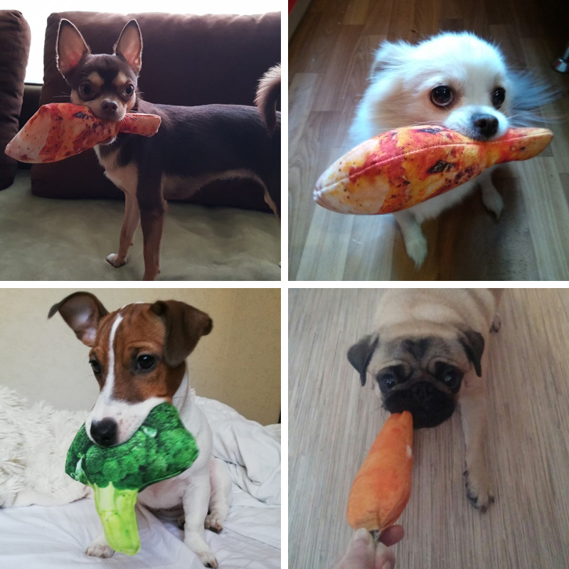 Anti Bite Dog Toys Creative Simulation Vegetable Drumstick Toy Puppy Pet Play Chew Toys Squeaky Toys
