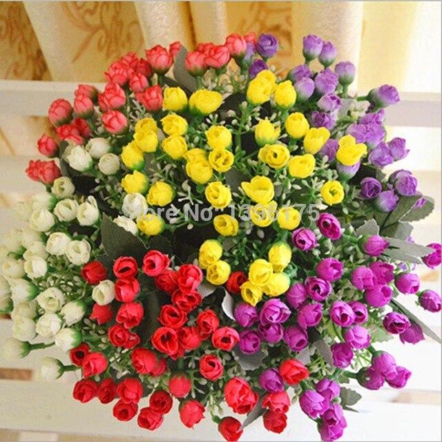 Какие цветы купить домой где купить дешёвые цветы в омске
