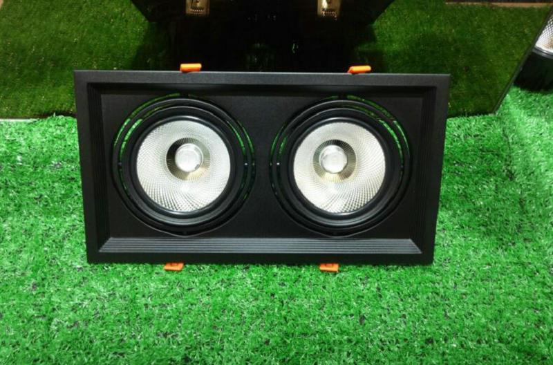 2 tête carré noir ou blanc 2*15W LED Downlight plafonnier lumière COB 30W blanc chaud/blanc froid 110V 220V 240V