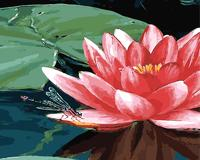 Lotus DIY Digital Canvas Oil Painting By Numbers Wall Art Frameless Paint Picture Home Decor For