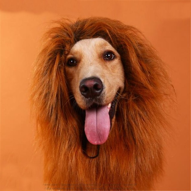 Personality Golden Retriever Dog Hair Lion King Wig Christmas Gift