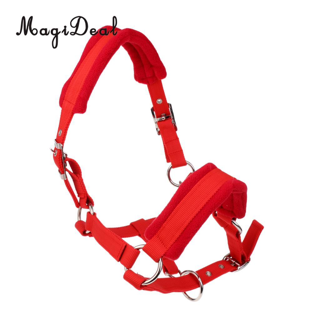 Soft Padded Adjustable Horse Head Collar Halter Large Size Fits for 1.5m above Height Horse + 2.5m Braided Horse Lead Rope
