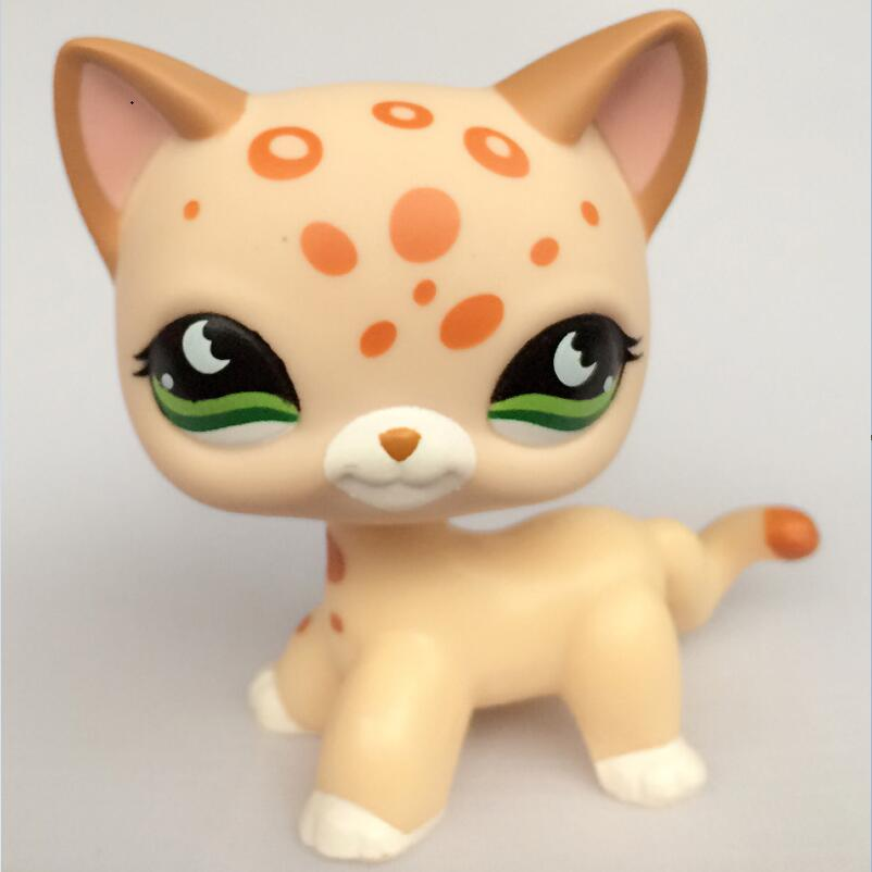 pet shop CAT toys Short Hair kitty #852 pet shop Tan Brown Spotted Leopard genuine pet shop 577 brown white