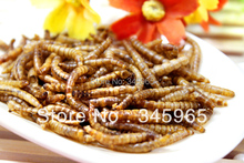 Free shipping  Dried mealworm dry hamster arowana fish food turtle food lizards feed pets food ,100g