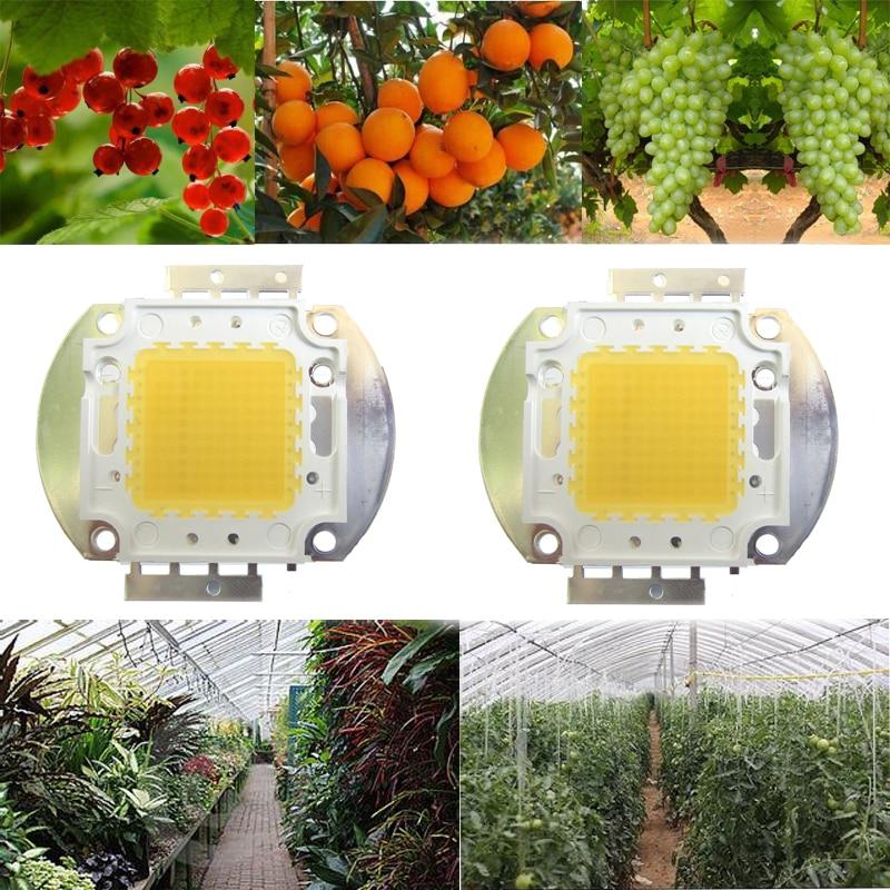 2pcs 100W White Full Spectrum 380~780nm 45mil 9000LM 30V-36V 3000mA lED Plant Growing Garden Bulb Vegetable Light Diode Part 200pcs bat54 bat54s diode schtk dual 30v 200ma sot23