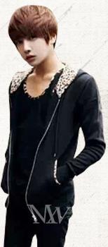 Hoodies pentru leopard non mainstream Pulover bărbătesc, jacheta - Imbracaminte barbati