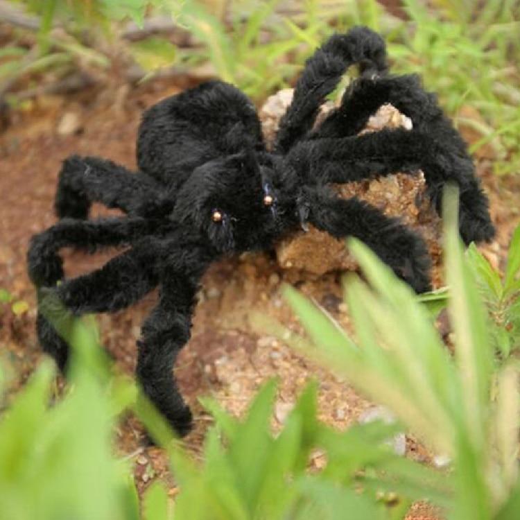 30/50/75cm Plush Simulation Spider Trick Toy For Halloween Decor ...