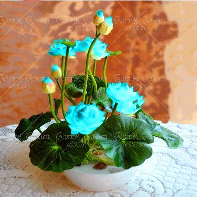 горшки цветочные заказать на aliexpress