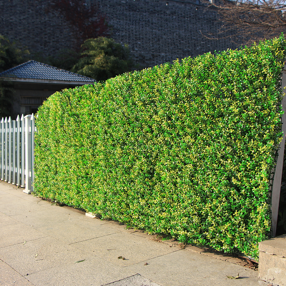 decorative plastic bamboo garden fence edging buy.htm top 10 boxwood leaves ideas and get free shipping 5c1hhanb  top 10 boxwood leaves ideas and get