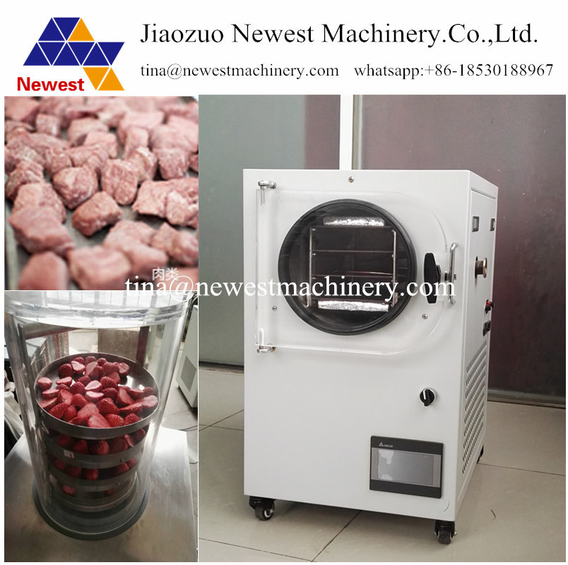 US $3350 0 |2019 Hot Selling Good Quality Mini Fruit Freeze Drying Machine  / Freeze Drying Machine lyophilizer Vacuum Freeze Dryer-in Food Processors