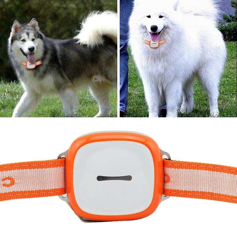 Étanche Pet Voiture GPS Tracker GPS GSM Wifi Positionnement Tracker SOS Fonction Avec LED Clignotant Nuit Pet GPS Locator Dispositif