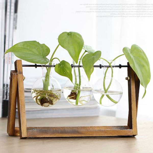 Creative vase plant glass hydroponic container farm decorative flowerpot home decorations 2