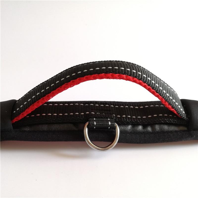 Dog Collar and Leash Set (9)_