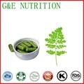 GMP Certified Moringa Oleifera Capsules 500mg * 200pcs